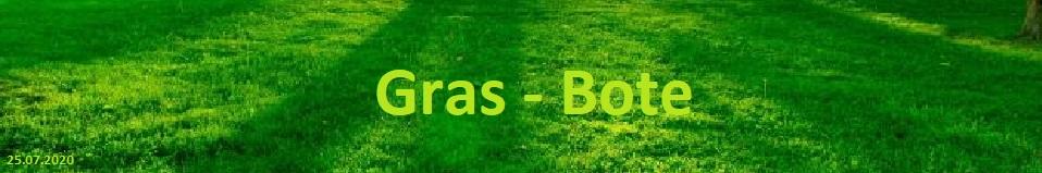 Sieger Gras Bote #1 Seite #1