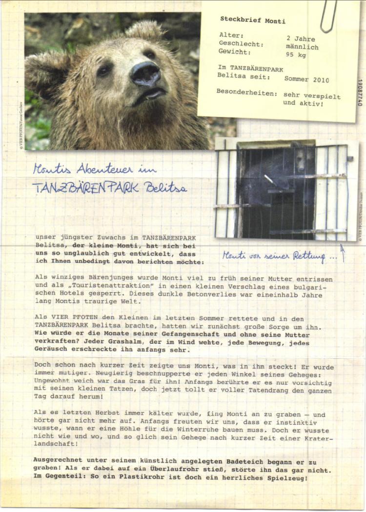 Tanzbären brauchen Hilfe! Brief von Vier Pfoten