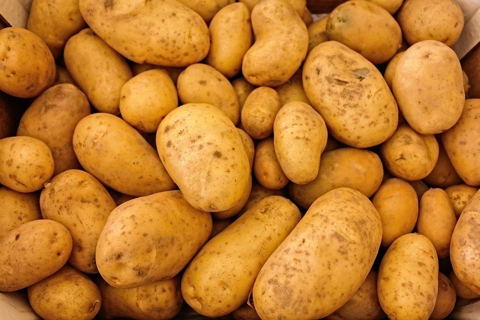 Neue Zeit - Magazin Oktober 2018 Gemüse des Monats: Kartoffel