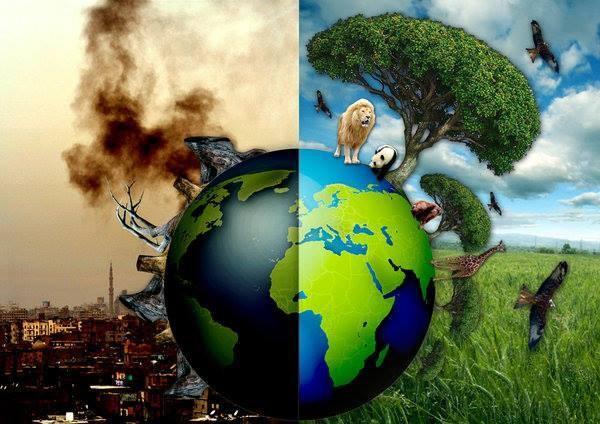 Schülerzeitung ASG Die Anstalt II Umweltschutz
