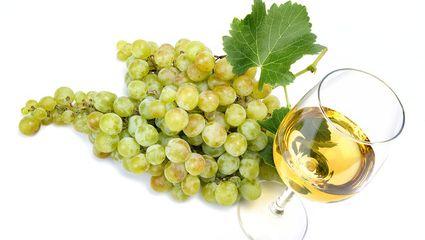 abc markets News 2/2018 Wein - ein Geschenk der Götter
