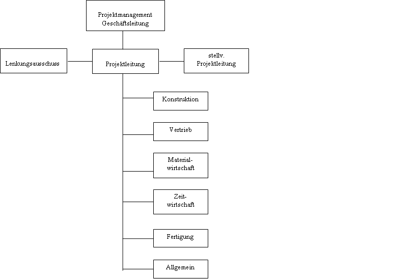 Erfolgreiche ERP-Projekte 5, Ausgabe Strukturplan